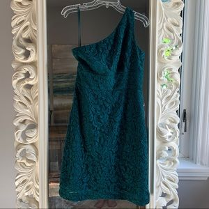 J Crew Alexa Dress in Leavers Lace